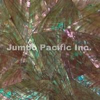 Abalon Shell Tiles JST1016