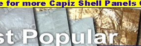 capizpanelspopular