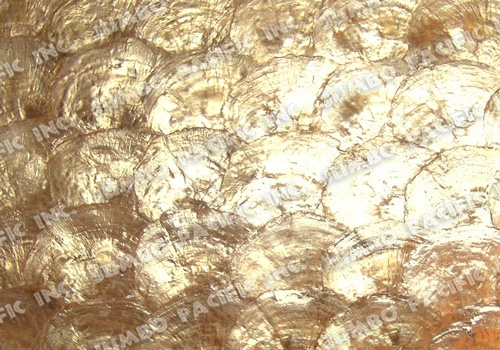natural-gold-half-moon-scallop