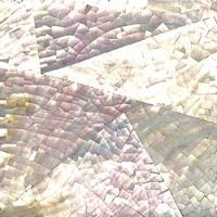 whitelip01