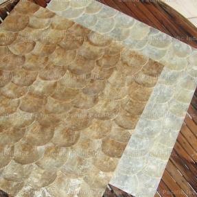 abalone-shells-tiles
